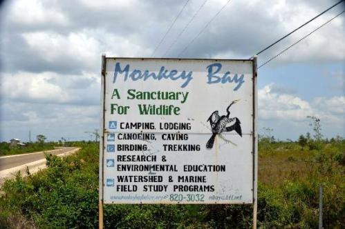 monkey-bay-wildlife-sanctuary